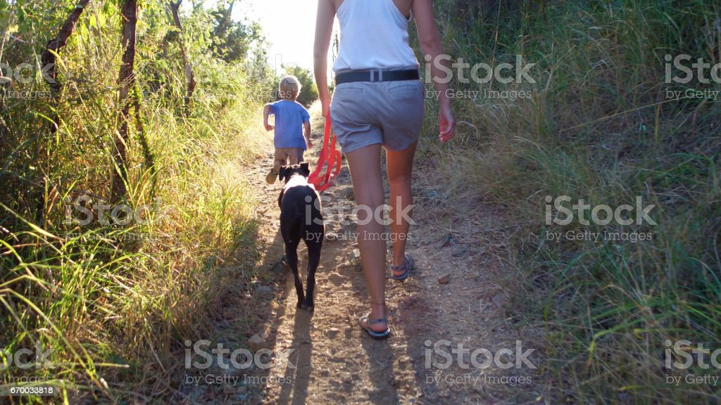 mother and child hiking and walking dog on trail in tropical forest stock photo