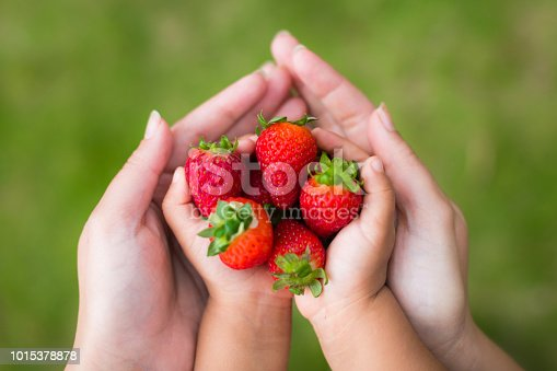Closeup shot of nice ripe red strawberries enclosed in 2 pairs of hands in the shape of an upside down heart.