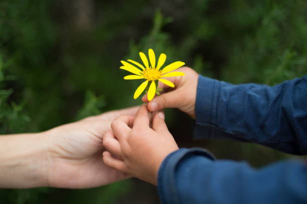 Mother and child to hand flowers stock photo