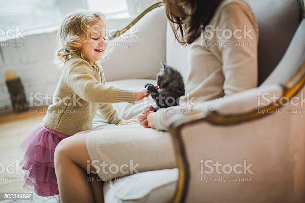 Mother and daughter are playing with kitten picture id502349892?b=1&k=6&m=502349892&s=612x612&h=4jdpn lekgeo1kkbbwrqkaajjx7thzn7lkt4sca4 qy=