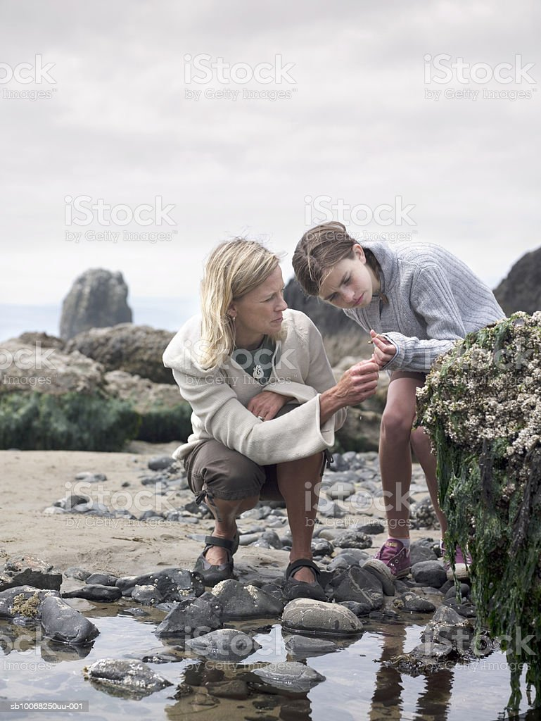 Mother and daughter (12-13) by tide pool royalty free stockfoto