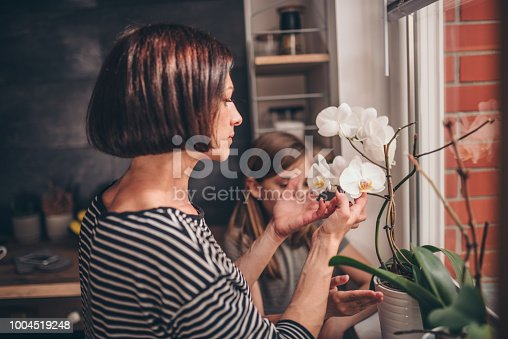 Mother and daughter standing in the kitchen by the window and checking orchid