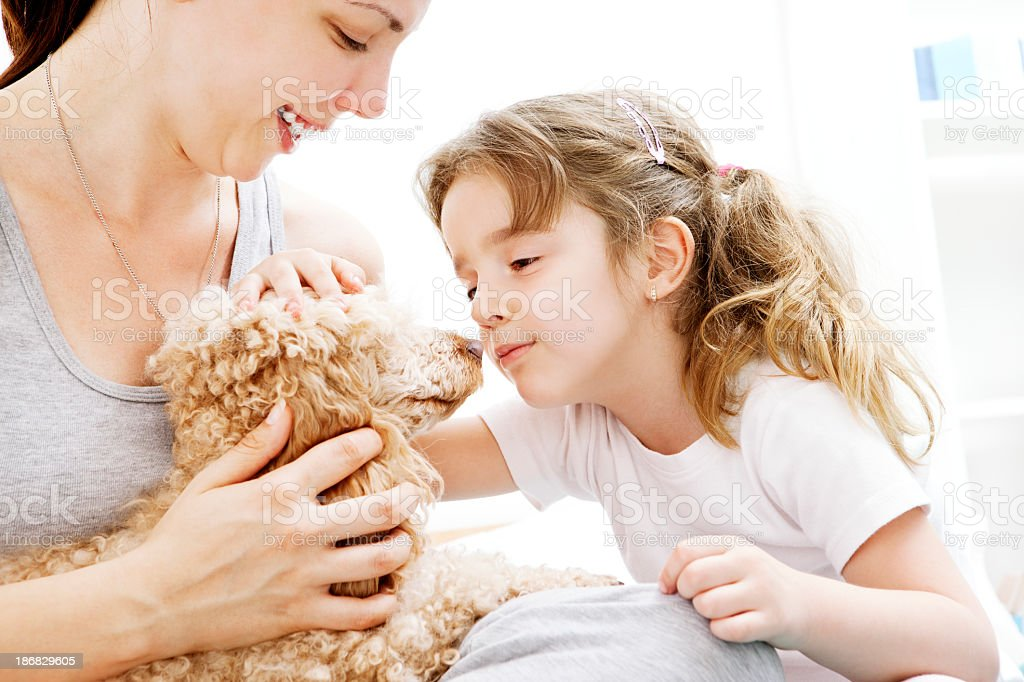 Mother and daughter having fun with brown poodle royalty-free stock photo