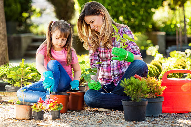 Mother and daughter in garden. Mother and daughter planting flowers together. potting stock pictures, royalty-free photos & images