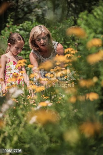 Mother and Daughter in Summer Enjoy in Yellow Daises Floral Garden