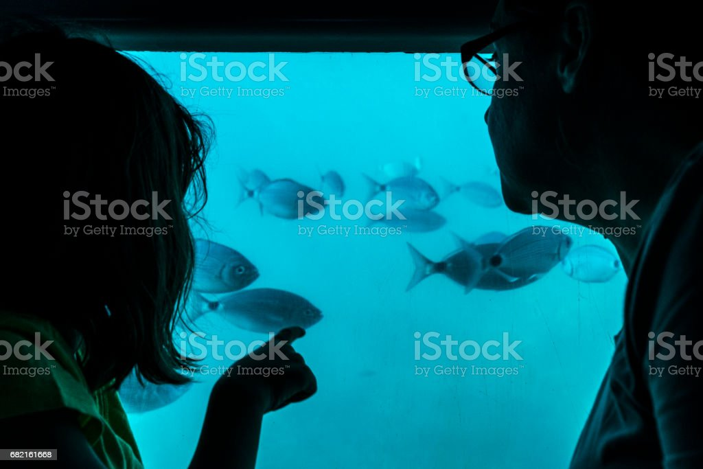 Mother and daughter looking at fish through a glass in a boat stock photo