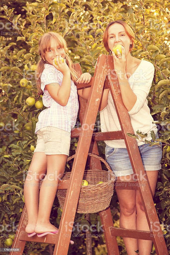 Mother and daughter picking apples royalty-free stock photo