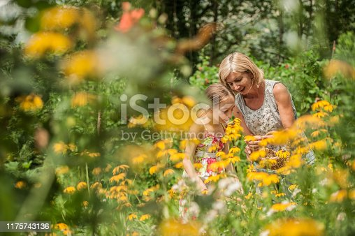 Mother and Daughter Picking Flowers in Summer Garden
