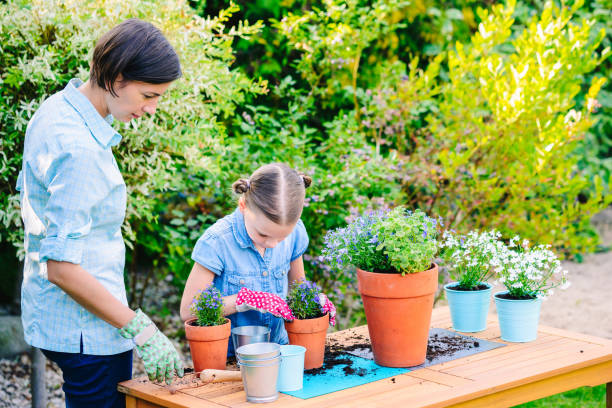 Mother and daughter planting flowers in pots in the garden - concept of working together, spending leisure time with family stock photo