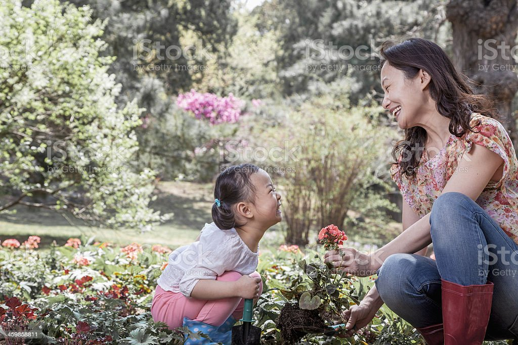 Mother and daughter planting flowers. stock photo