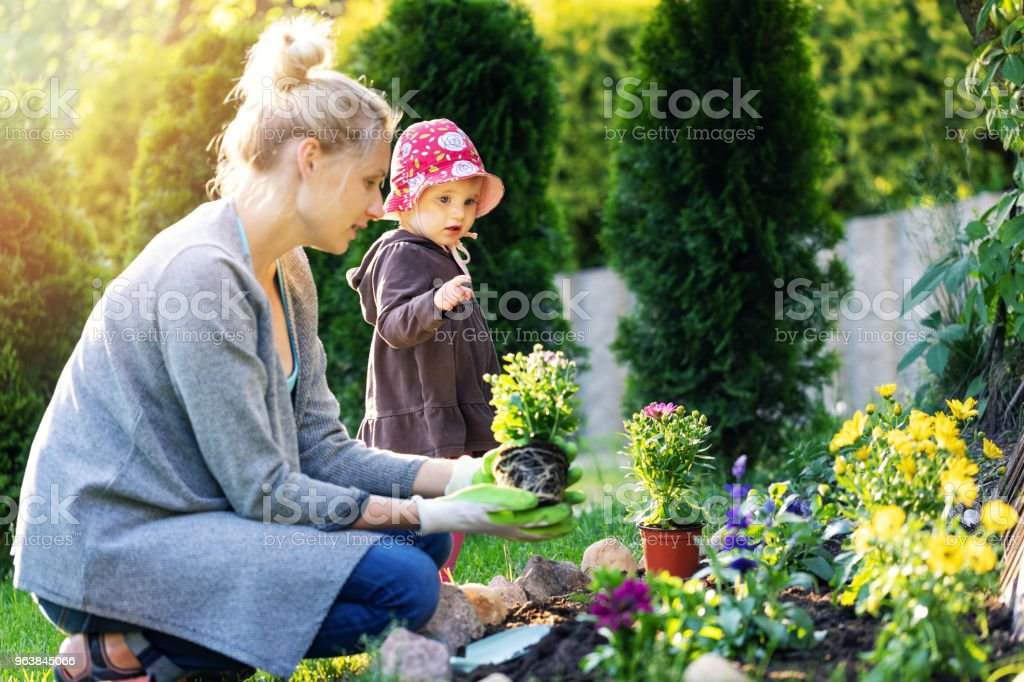 mother and daughter planting flowers together in home garden bed - Royalty-free Activity Stock Photo