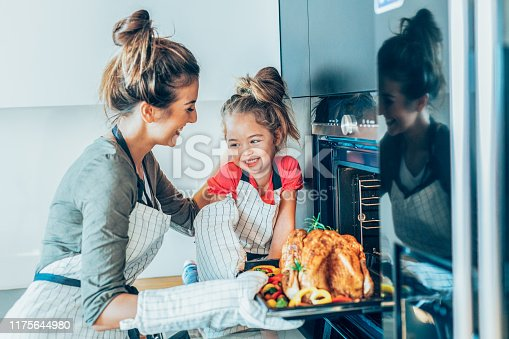 istock Mother and daughter preparing turkey 1175644980