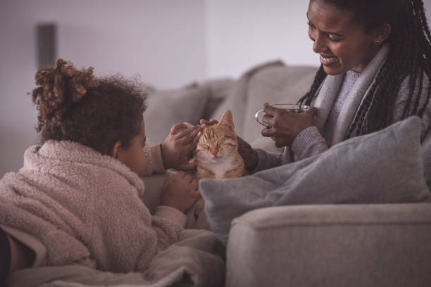 Mother and daughter stroking a cute ginger cat, sitting on bed couch in the living room. stock photo