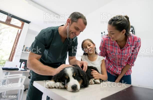 Mother and daughter taking a puppy to the vet picture id979195830?b=1&k=6&m=979195830&s=612x612&h=jk empotz7hppaxmaeedpvn1eg66hqi9pxavjntt eu=