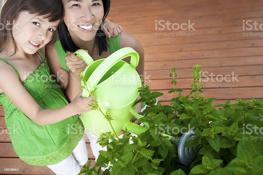 Mother and Daughter watering pot of herbs royalty-free stock photo