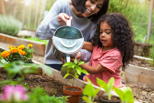 Mother and daughter watering potted plant at community garden stock photo