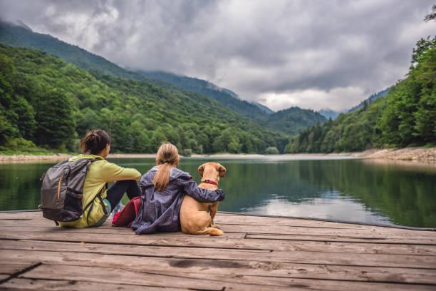 mère et fille avec un chien reposant sur une jetée - canidés photos et images de collection