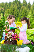Mother and daughter planting flowers in the garden.View other gardening photos and videos in my portfolio: