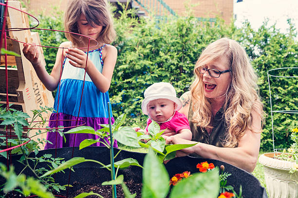 Mother and daughters gardening in a small space outdoors. stock photo