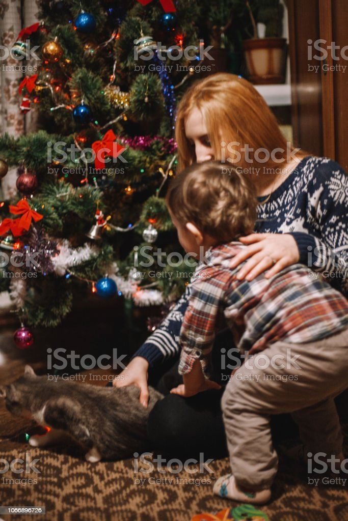 Mother and her child play with cat beside Christmas tree at home