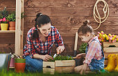Mother and her daughter engaged in gardening