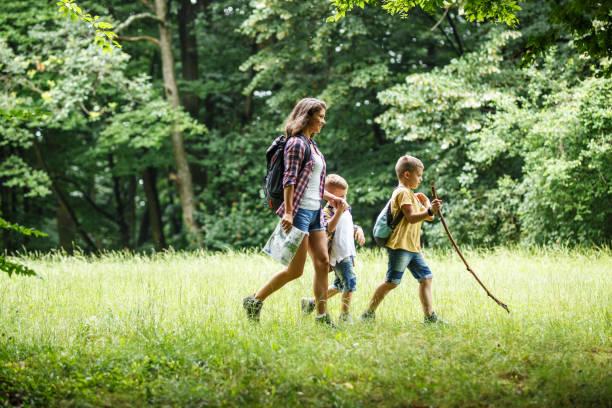 madre y sus hijos pequeños senderismo por el bosque. - excursionismo fotografías e imágenes de stock