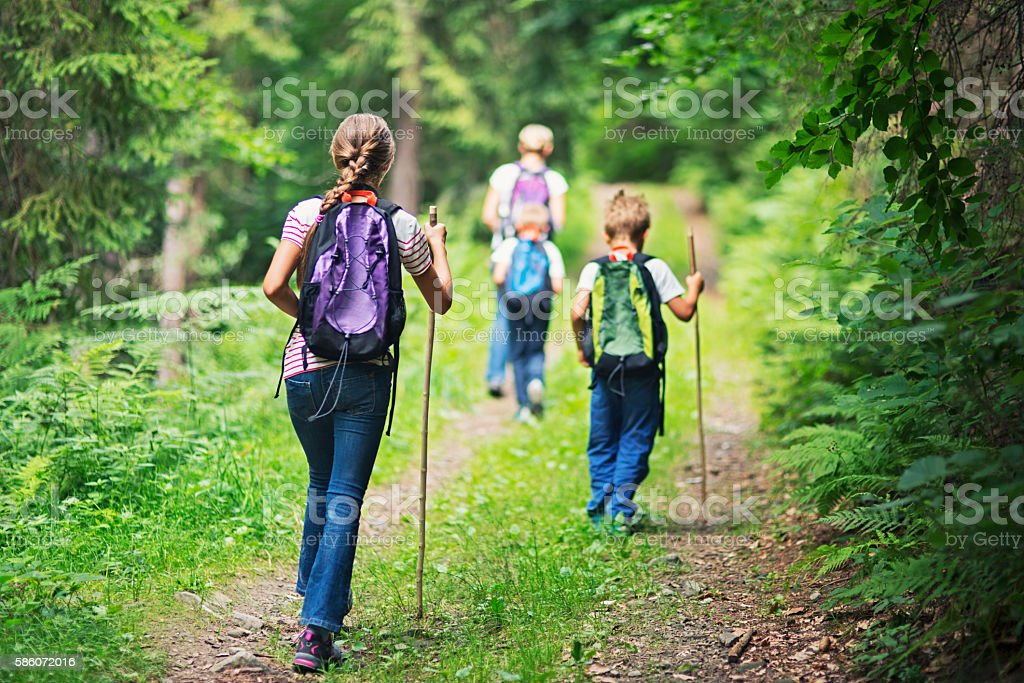 Mother and kids hiking in forest stock photo