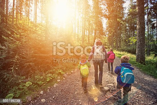 istock Mother and kids hiking in sunny forest 535199239