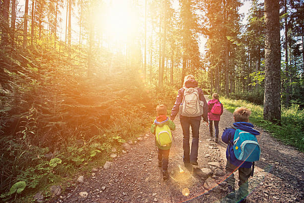 mother and kids hiking in sunny forest - rural lifestyle stock photos and pictures