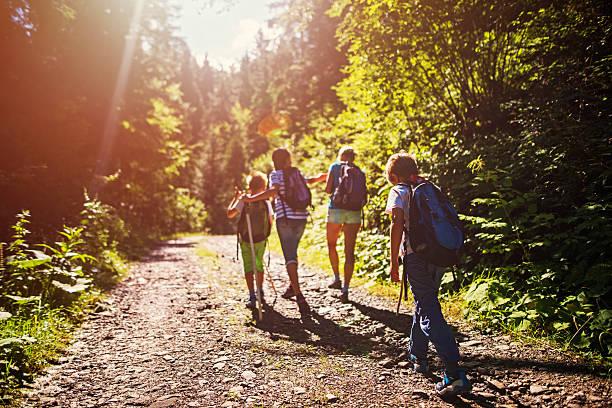 Madre y niños caminatas en bosque de sol - foto de stock