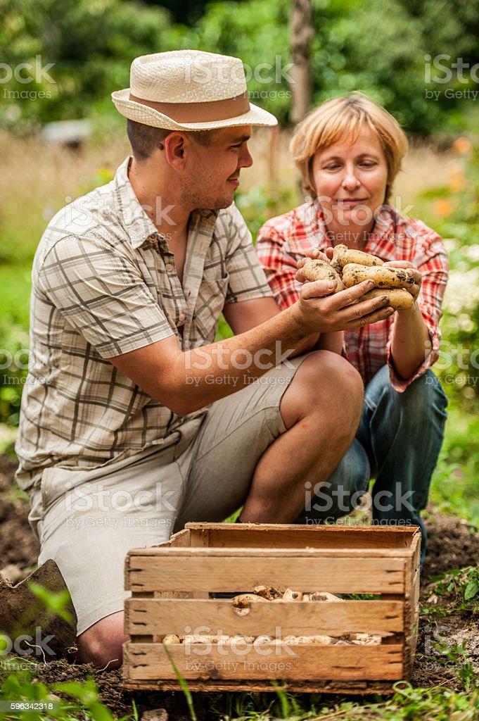 Mother and Son Admiring Their Potatoe Lizenzfreies stock-foto