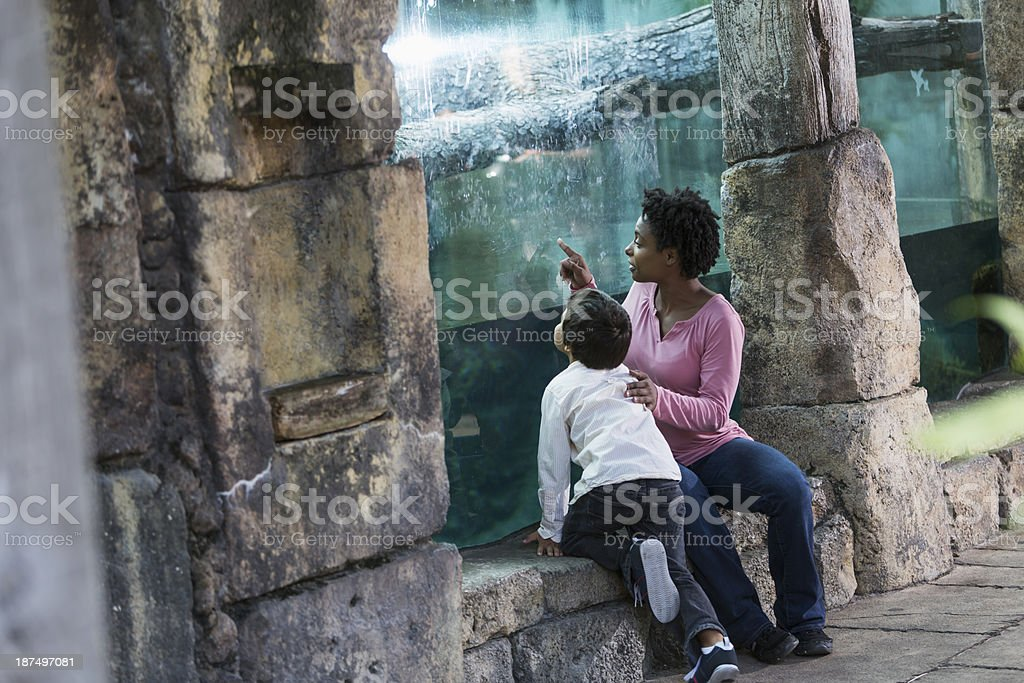 Mother and son at the zoo stock photo