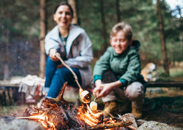 mother and son cook marshmallow candies on the campfire - falò foto e immagini stock