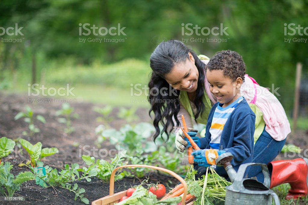 Mother and Son Gardening Together stock photo