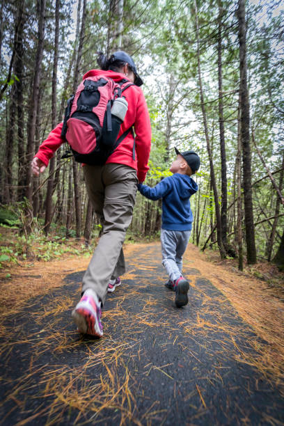 Mother and Son Hiking in Forest in Summer stock photo