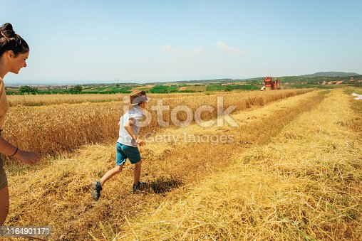 1094815168 istock photo Mother and son in a field of grain 1164901171