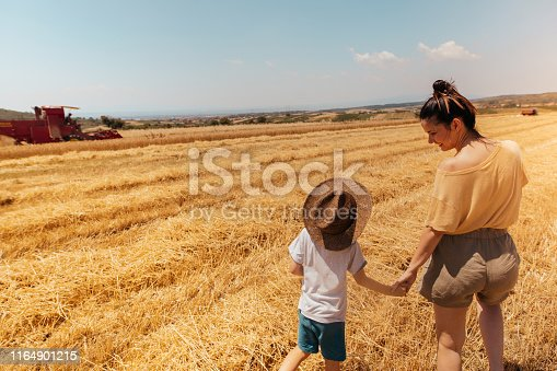 1094815168 istock photo Mother and son in a field of grain 1164901215