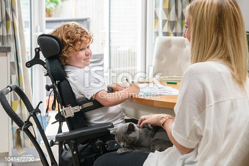 Mid adult mother and disabled 6 year old son in dining room, face to face, smiling and cheerful