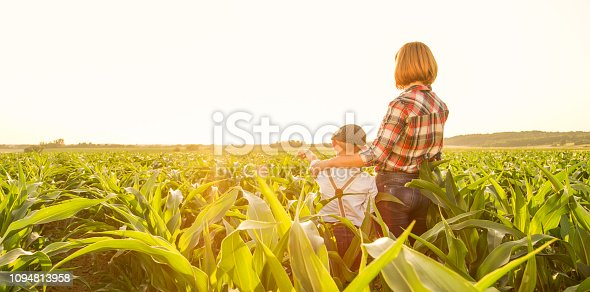 1094815168 istock photo Mother and son on corn field 1094813958