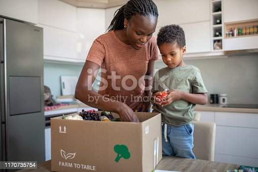 istock Mother And Son Opening Parcel With Meal Kit 1170735754