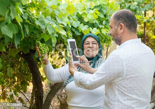 1063236916 istock photo Mother and son taking pictures of green grapes 1180203984