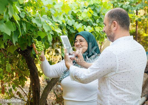 1063236916 istock photo Mother and son taking pictures of green grapes 1180205258