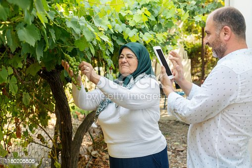 1063236916 istock photo Mother and son taking pictures of green grapes 1180205805