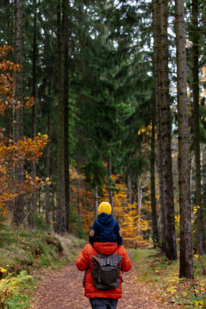 mother and son walk through the forest in autumn stock photo