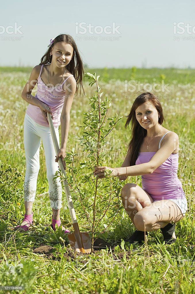 Mother and  teen girl planting tree royalty-free stock photo