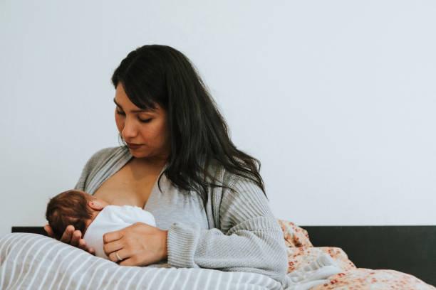 mother breastfeeding her baby - amamentação imagens e fotografias de stock