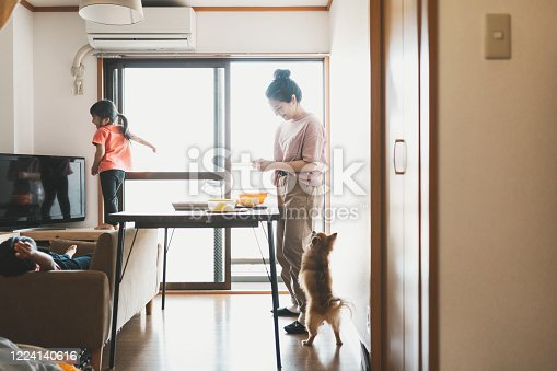 Asian mother making marmalade jam. The dog watching it.