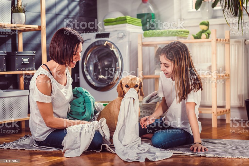 Mother, daughter and dog having fun at laundry room stock photo