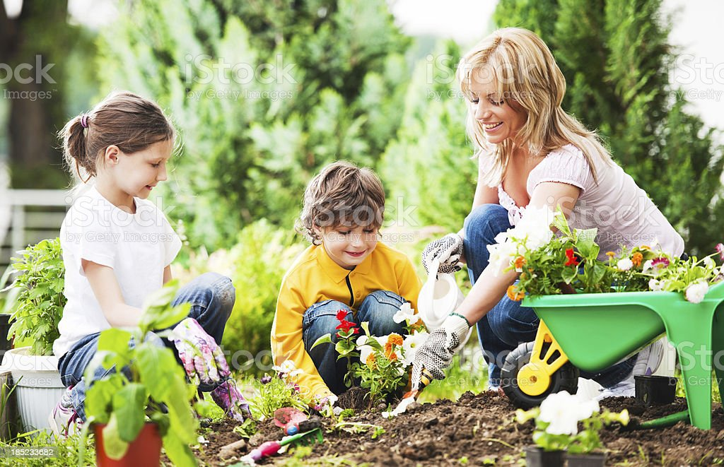 Mother, daughter and son planting flowers together stock photo