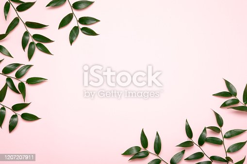 Mother earth day on pink background with green leaves. Flat lay. Concept green world earth day.